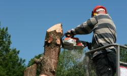 man-with-chainsaw
